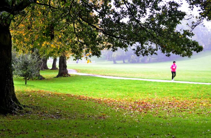 Taking a jog in Monkton Park