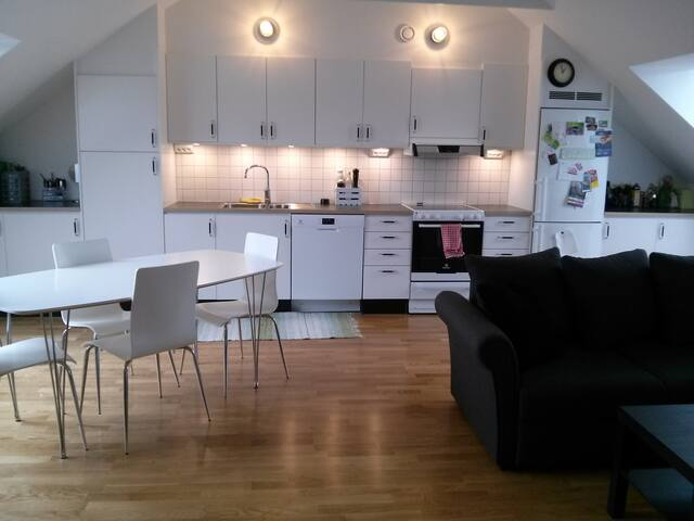 "Entire flat, in central Gothenburg+""micro balcony"""