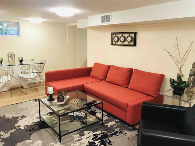Larger comfortable sectional with the ability to turn into a queen size bed.