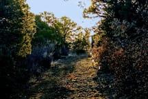 Find the Meditation Labyrinth