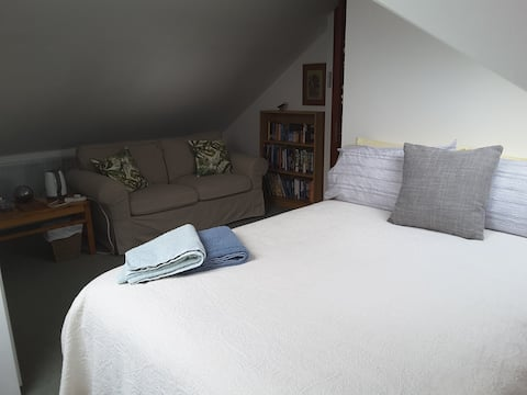 Quiet, spacious attic room with private shower room and fridge.