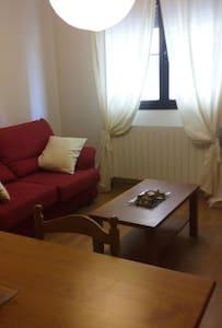 Acogedor apartamento en AINSA - Aínsa