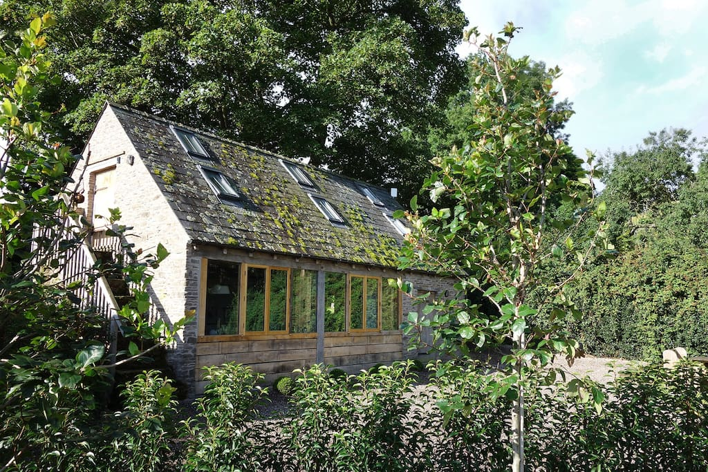 The Studio is sheltered by a pair of beautiful old Sycamore trees