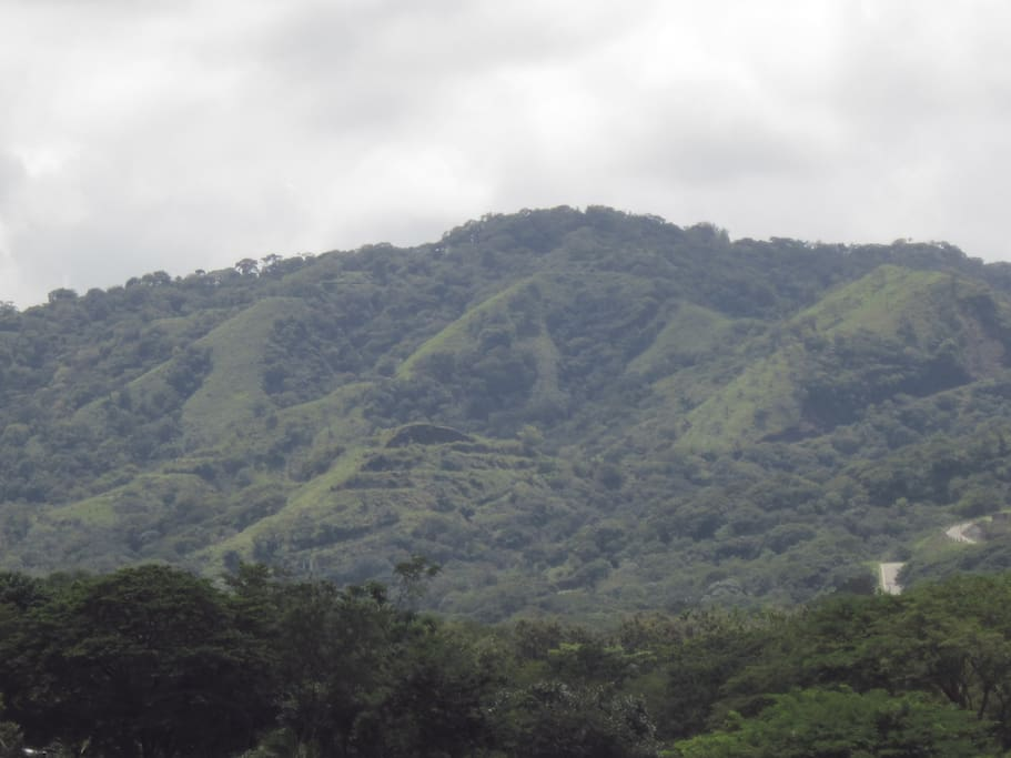 Rear area view of Condo