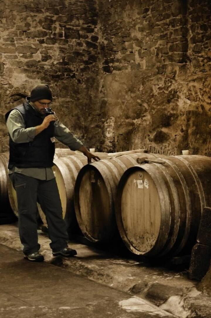 Wine tasting by Fattoria di Faltognano