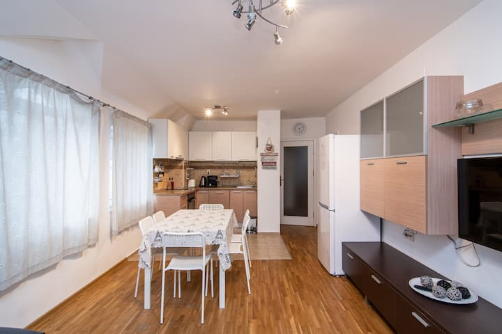 Comfy flat for 5 guests close to park free parking