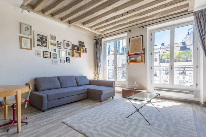 Lovely flat in city center of Paris