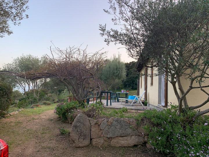 Villa indipendente  Nelle colline di Olbia