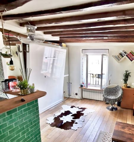 Cosy flat in front of Aligre Market (Paris 11e)