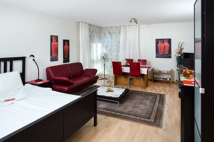 Self contained private, spacious, apartment - Kehrsatz - Apartemen