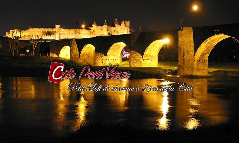 gite de charme, petit Loft à 2 pas de la Cité - Carcassonne - Loft