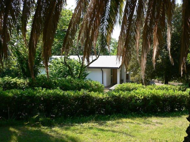 Casa immersa nel verde - Aranova - Haus