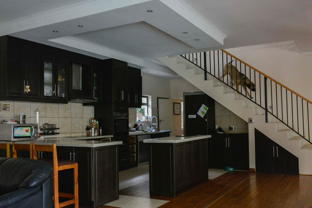 The open plan kitchen with the stairs leading to the 3rd reception room which leads onto 5 bedrooms.