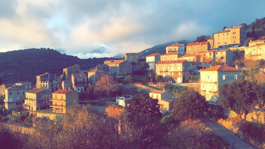 vue sur le golfe du valinco - Fozzano - Pis