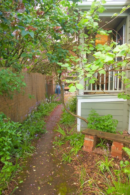 Private entrance to the studio on the left side of the house. Pathway to private entrance & outdoor space.