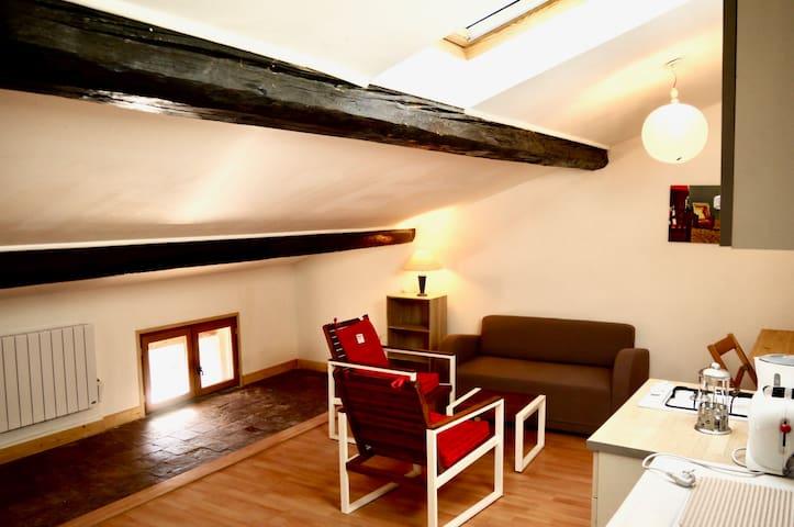 Appartement 2 pièces au centre de Montélimar - Montélimar - Apartment