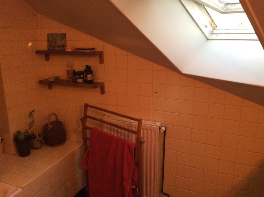 Salle de douche avec Velux
