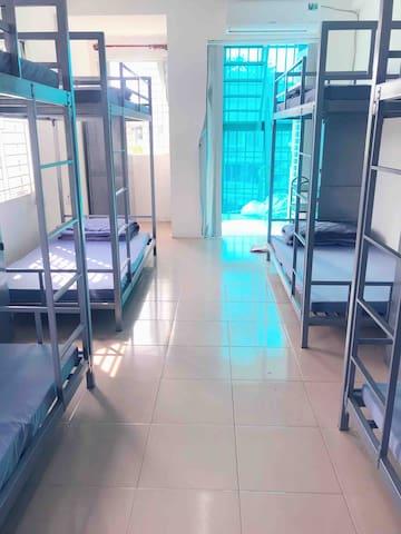 Penguin Dorm ( 100.000vnd/ bed/ day )