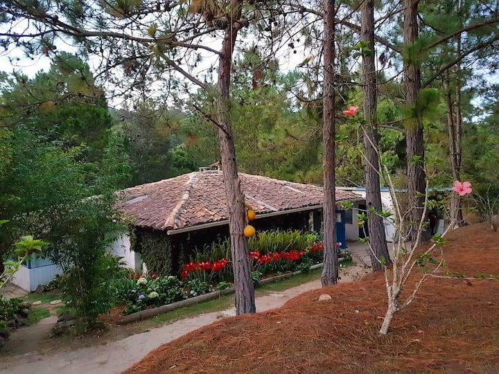 Habitacion Hortensia(Hospedaje en Casa del Arroyo)