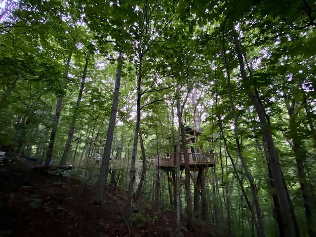 NEW Treehouse experience minutes from DT AVL