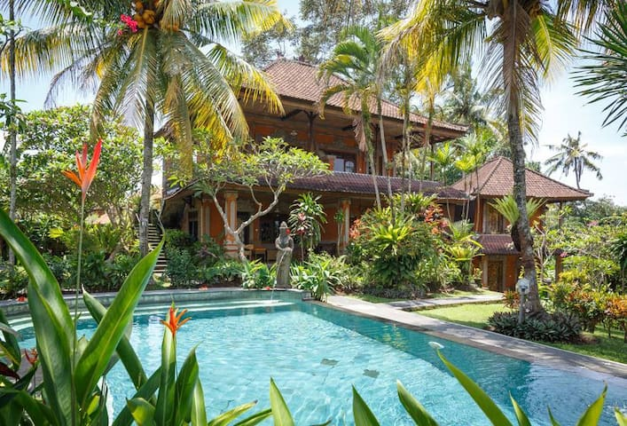 Premium room with AirCon in Central Ubud