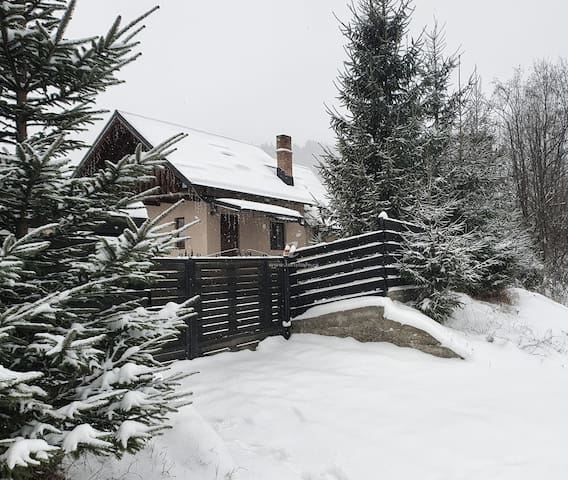 Alesia Cottage, relax at the foothill of Rarau.