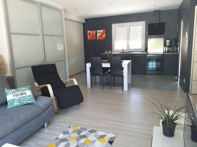 """Maison """"au bord de l'ain"""" 78 m2 3chambres"""