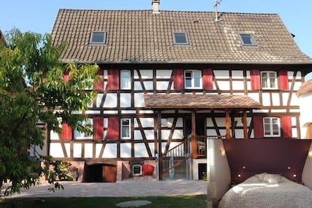 Le petit Schelishans : Chambre Gutenberg - Oberschaeffolsheim - Guesthouse
