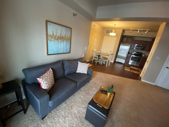 Beautiful 2 bedroom/2 bath condo in Waterloo