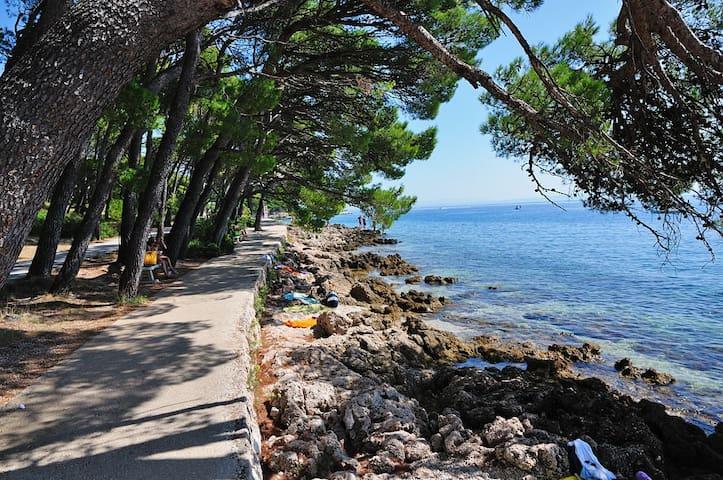 Brela beach promenade