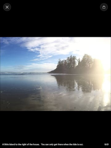 """The Beachside Location"" - Tofino - Talo"