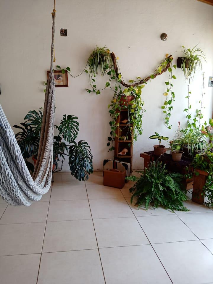 """""""Casa Mar"""" /  Habitación Tierra"""