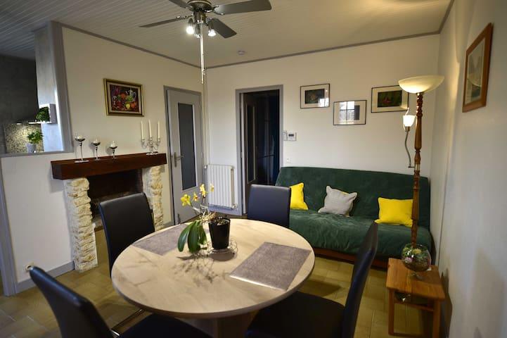 Séjour Salon A gauche cuisine, au milieu porte donnant sur l'entrée et salle de bain et au fond porte sur chambre