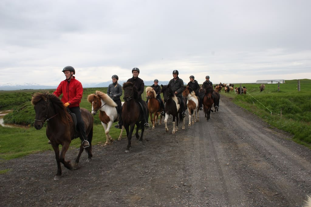 riding tour with tourists