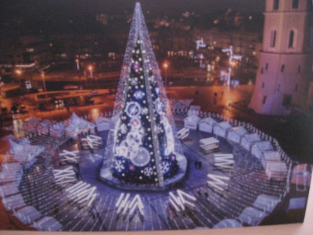 2019 New Year tree at Cathedral square