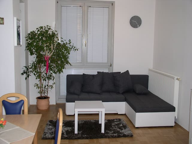 BEAUTIFUL APARTMENT NEAR CITY CENTER - Ljubljana
