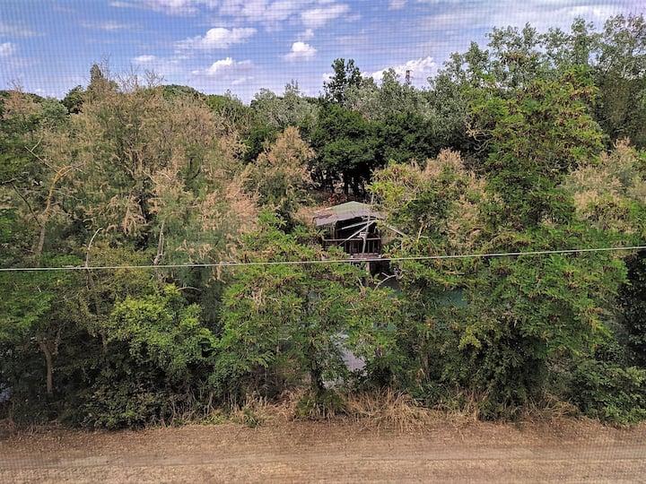 Stanza con balcone personale - Cervia MiMa