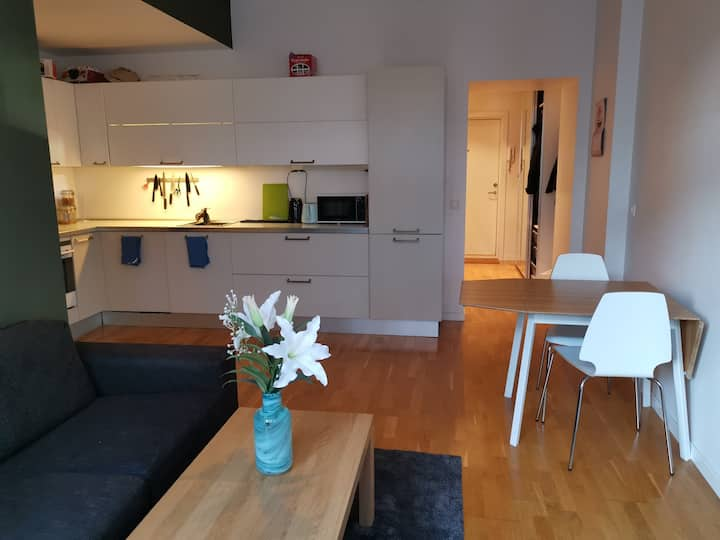 Cozy appartment in Grunerløkka with roof terrace!