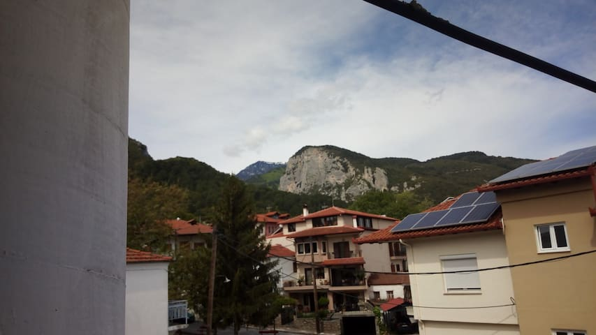 Apartment next to Olympus mountain