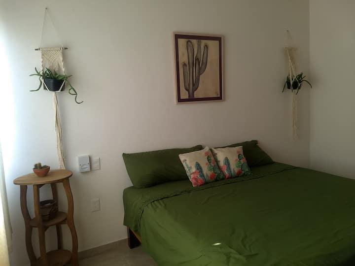 Habitación Cactus Av. Pablo Silva Villa de Álvarez