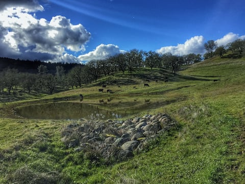 Rustic Pope Valley Retreat