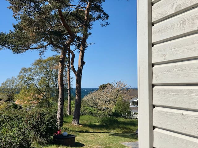 A southern beauty on the coast in Skåne