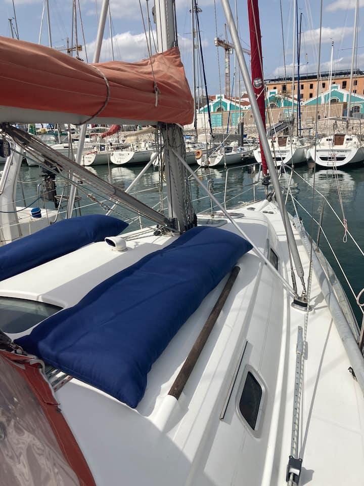 Sea Bloom  - Sleep & Sail in Tejo