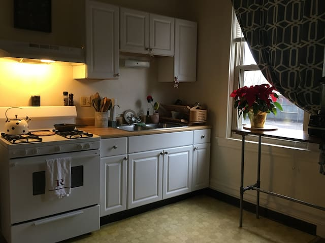 1 Bedroom Apartment in Quaint Pittsburgh Borough - Pittsburgh - Apartment
