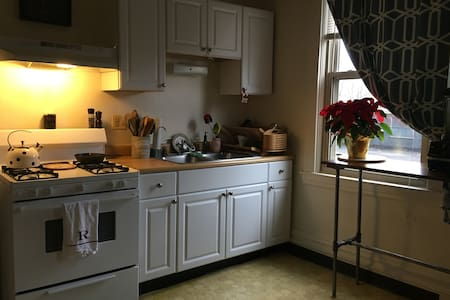 1 Bedroom Apartment in Quaint Pittsburgh Borough - Pittsburgh - Wohnung