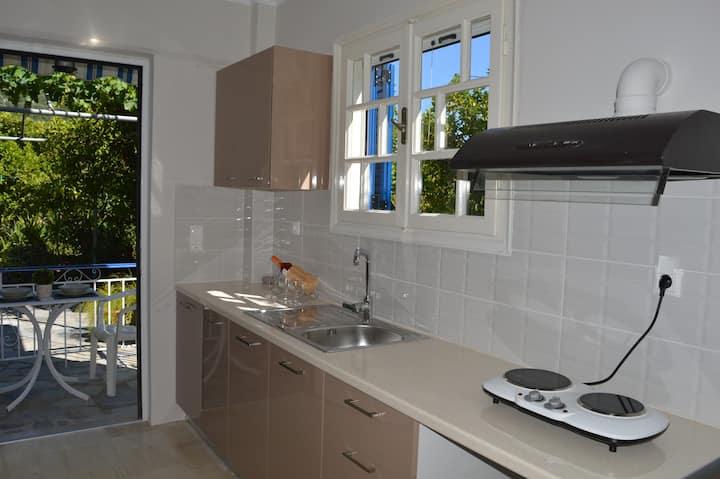 Eleni studios Nidri small apartment for 3 people