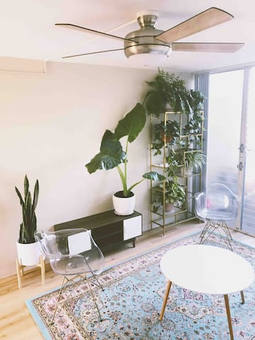 Cozy room for your Honolulu get away