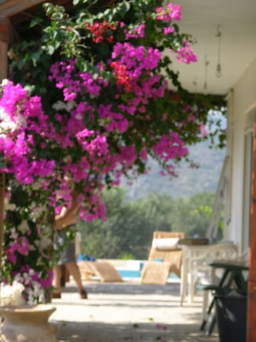 Villa Frangipani with large private pool - Rhodes - Villa