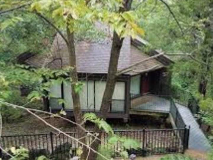Treehouse at Lake Ozark
