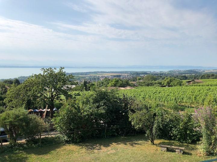 Villa Pastorella, région Neuchâtel